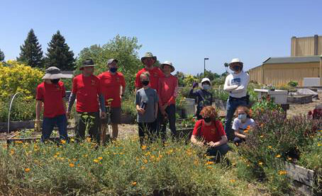 BSA Troop 74 volunteer day at Casa Grande Garden
